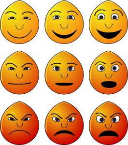 Mémoire : importance des émotions et sensations