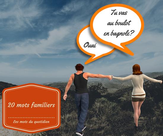 20 Mots Du Quotidien En Francais Familier