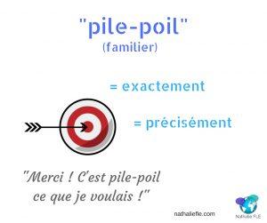 expression française pile-poil